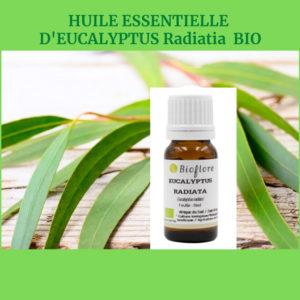 Eucalyptus Radié Bio