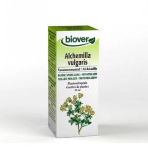 Alchémille Bio